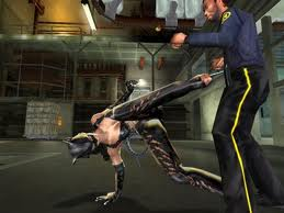 catwoman fighting